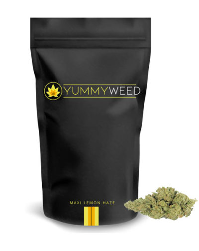 packaging-maxilemon-yummyweed