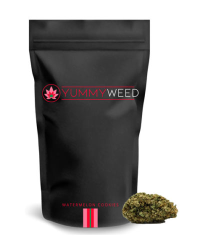 packaging-watermelon-cookies-yummyweed