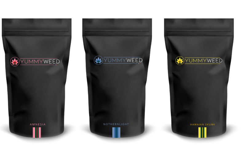 packaging-revendeur-cannabis-cbd